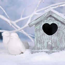 Winterize Your Home: A Travel Checklist for Snowbirds